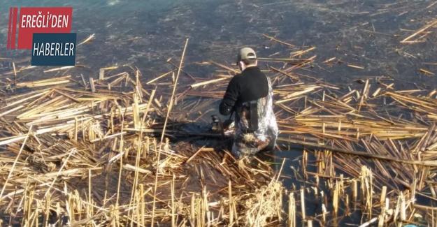 Beyşehir Gölü'nde balıkçı ağına takılan bahri kuşu kurtarıldı