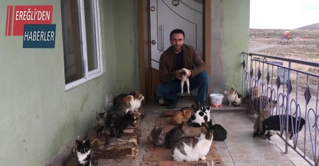 """Konya'da yaklaşık 30 kedi besleyen imam: """"Biz onlara baktıkça huzur bulduk"""""""