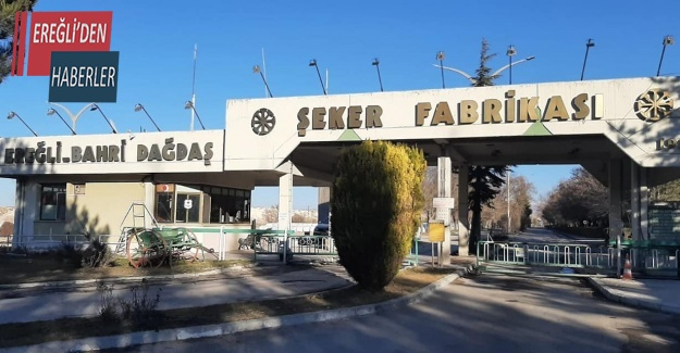 Ereğli Şeker Fabrikası rekor kırdı