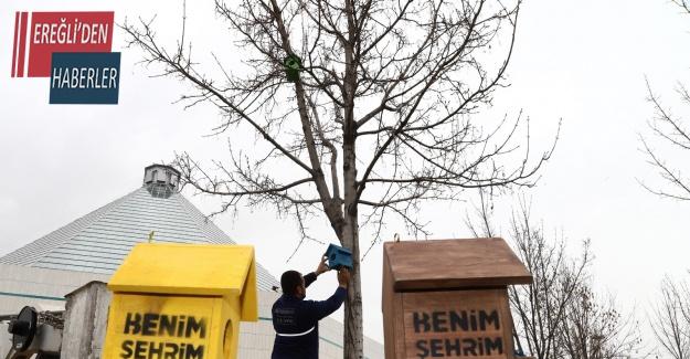 Konya'da şehir geneline kuş evleri monte edildi