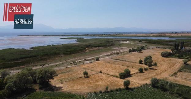 Beyşehir'de çiftçilere anız yakılmaması çağrısı
