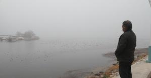 Beyşehir'de yoğun sis etkili oldu