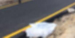 Ereğlide genç kızın cesedi bulundu